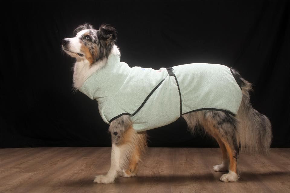 Hundekleidung besticken
